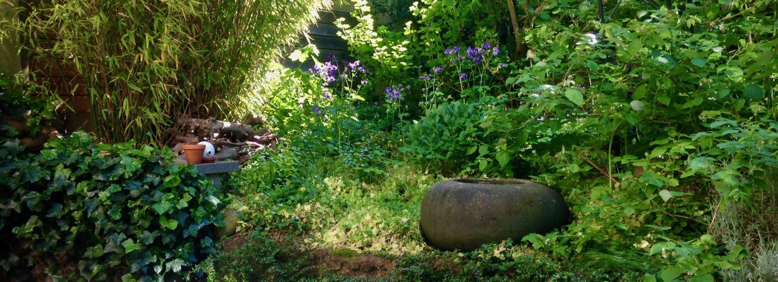 Tuin van de accommodatie Zen